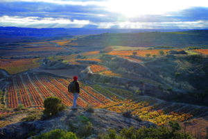 Wine Enthusiast Magazine Releases List of Stunning Wine Travel Destinations for the New Year