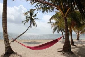 Belize - Simple Pleasures
