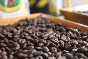 From Berry to Brew: Touring a Coffee Farm in Costa Rica's Central Valley (PHOTOS)