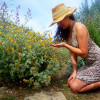 millennials gardening
