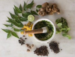 Why Everyone Should See an Ayurvedic Doctor