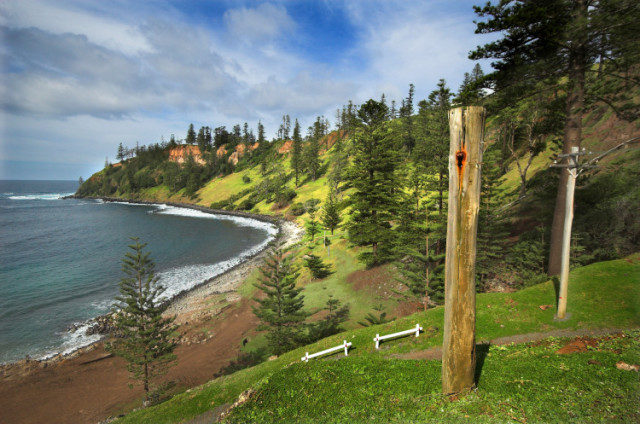 Saving the Language of Norfolk Island