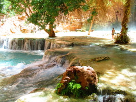 A Journey Into Havasu Canyon