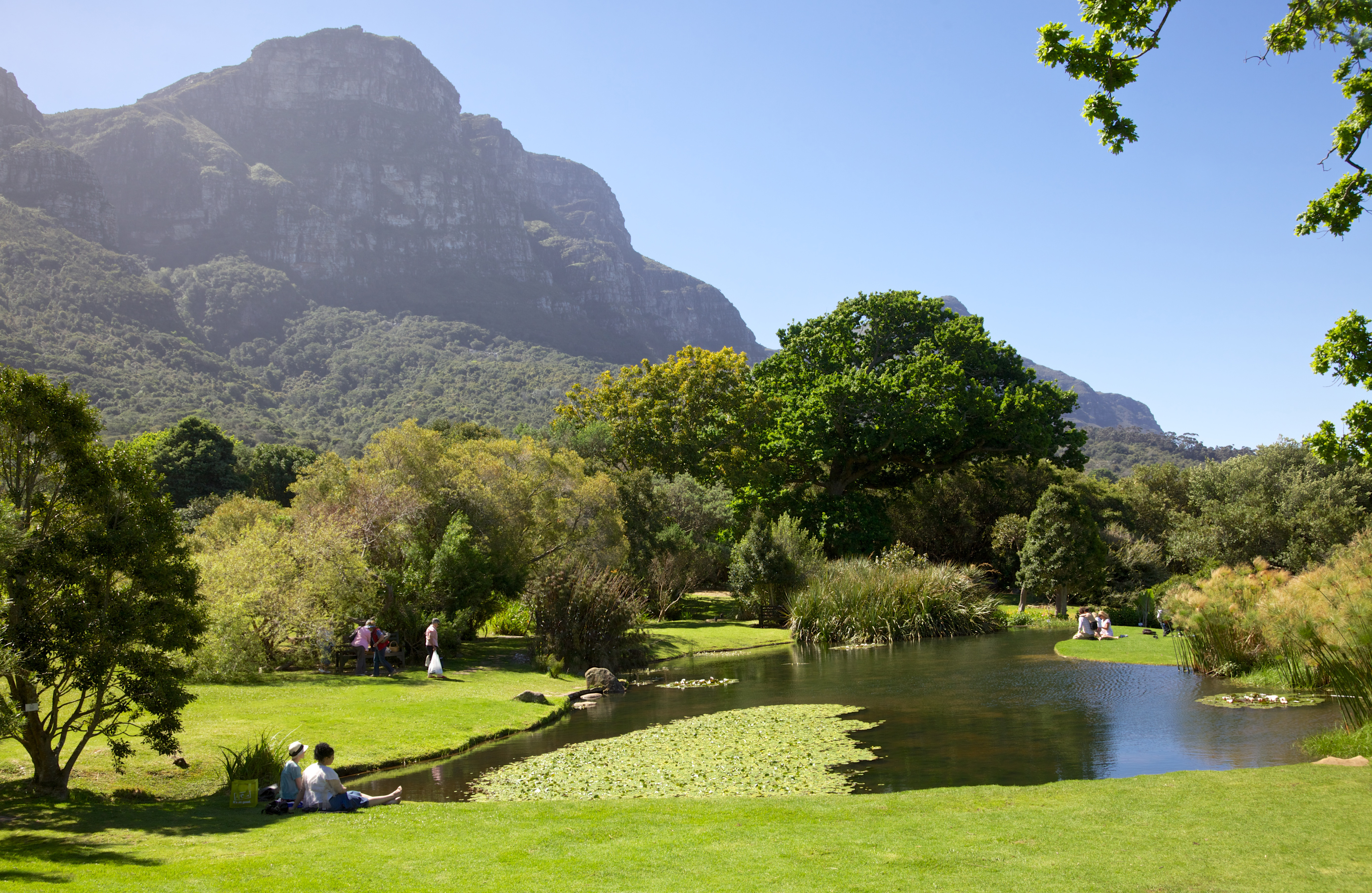 7 of the Best Botanical Gardens and Arboretums Around the ...