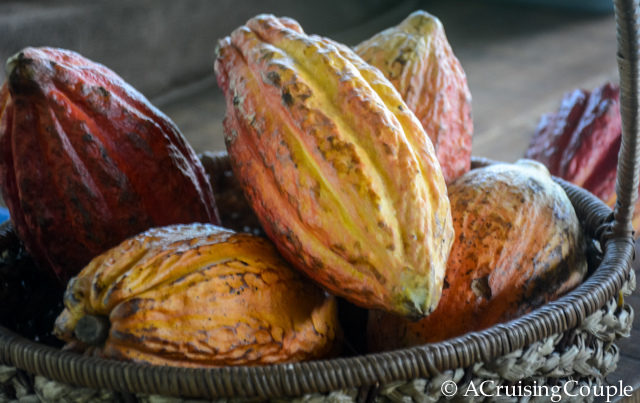 Try These Amazing Superfoods During Your Next Visit to Costa Rica