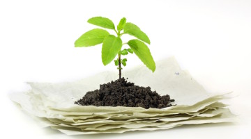 plantable products