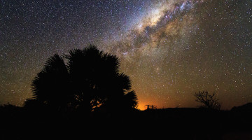 In the Mara Under the Stars at Serian