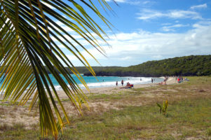 From Sands to Cobblestones, an Eco-Friendly Exploration in Puerto Rico