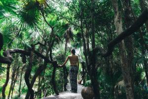 A Jungle Hideaway in Tulum