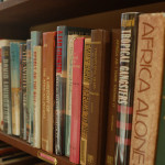 Culture-ist's Top 5: Our Favorite Books About Africa