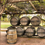 ecoVINO: Bringing Organic Wine to Your Table in an Astrapouch