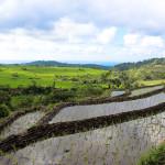 Bucolic Bali (PHOTOS)