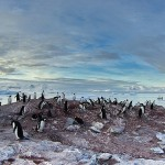Antarctica Like You've Never Seen it Before