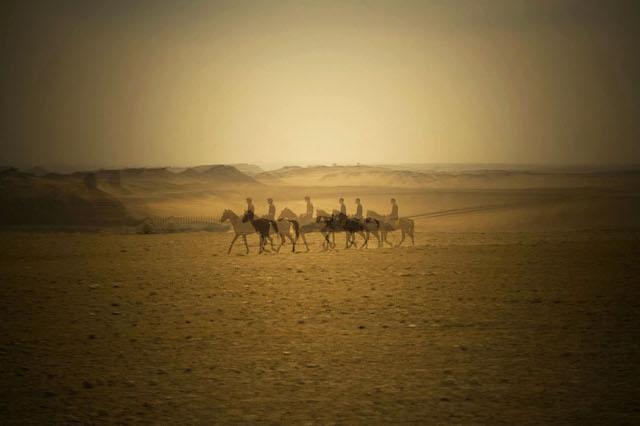 Camel ride pyramids giza
