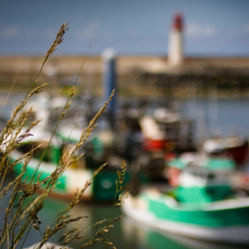 guide to oleron france