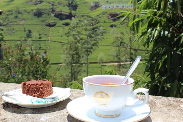 Sri Lanka Tea 3