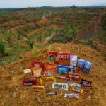 conflict palm oil plantation