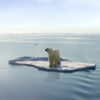 arctic drilling climate change