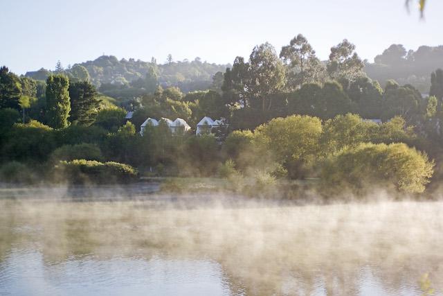 Property Misty Mornings