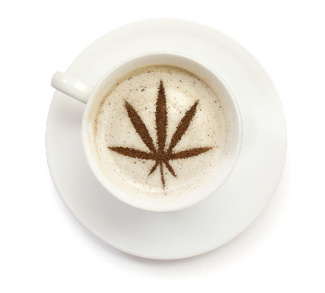 marijuana coffee comes to washington state