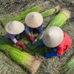 woman farmers