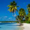 carribbean beach