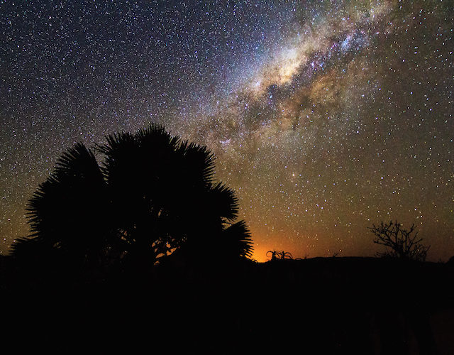 starry night africa