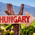 Hungary for Wine: Exploring Ancient Vineyards