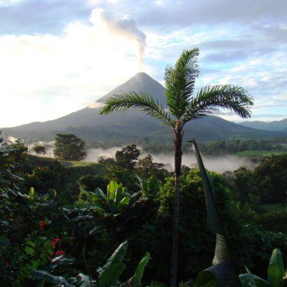 Costa rica permaculture