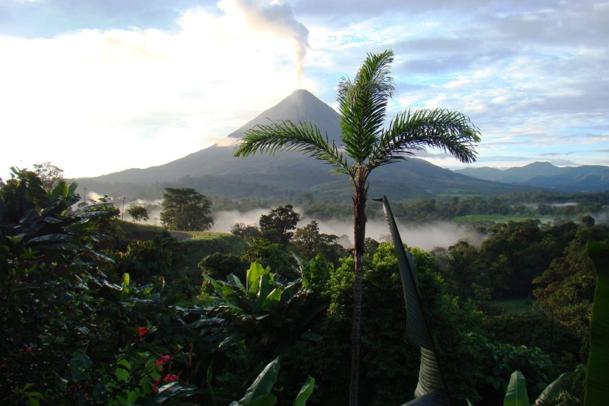 Costa rica permaculture